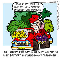 Cartoon Peter van der Wiel
