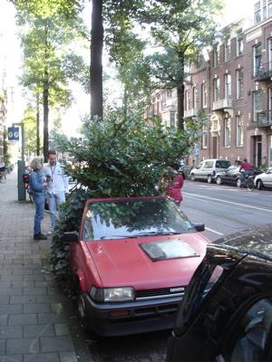 dienst stadstoezicht amsterdam