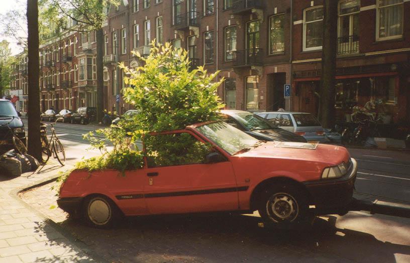 Parkeren In Voortuin : Eigen tuin auto